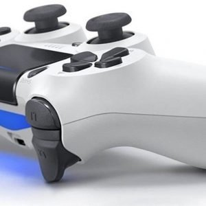 ps4-wit-dual-shock